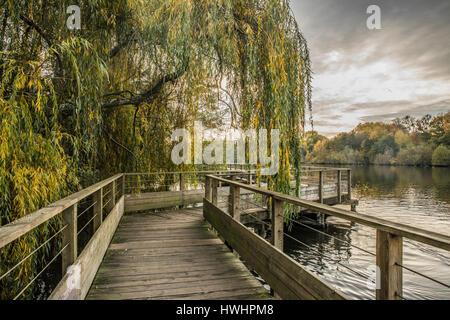 Wood footbridge on the Erdre river in autumn (Nantes, Loire Atlantique) - Stock Photo