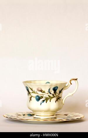 Teacup on saucer - Stock Photo
