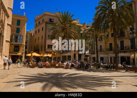 Palma de Mallorca, Sa Llotja, La Llotja Square, Palma, Majorca, Balearic Islands, Spain, europe - Stock Photo