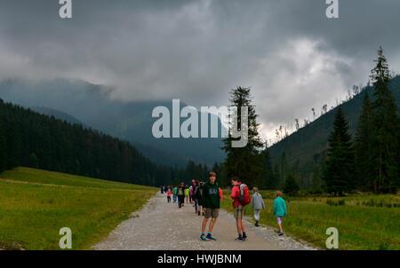 Wanderer, Bergalm, Dolina Koscieliska, Hohe Tatra, Polen - Stock Photo