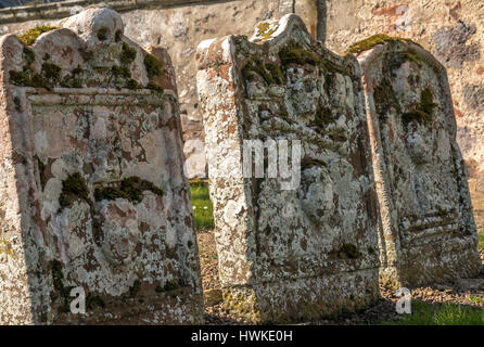 Close up of old lichen covered leaning gravestones, Morham churchyard, East Lothian, Scotland, UK, smallest parish - Stock Photo
