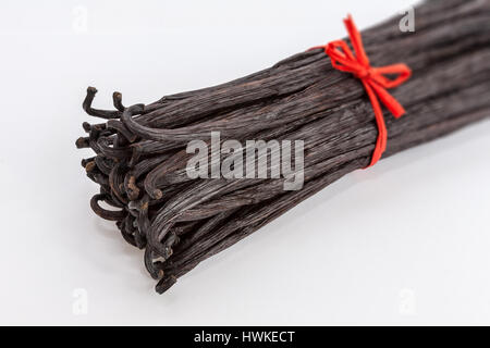 Bundle of Bourbon vanilla pods tied with red raffia - Stock Photo