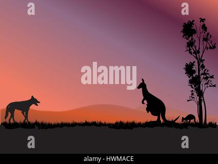 a dingo hunting kangaroos in the sunset - Stock Photo