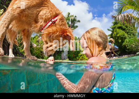 Little child play with dog, train golden labrador retriever puppy in swimming pool - jump underwater to retrieve - Stock Photo