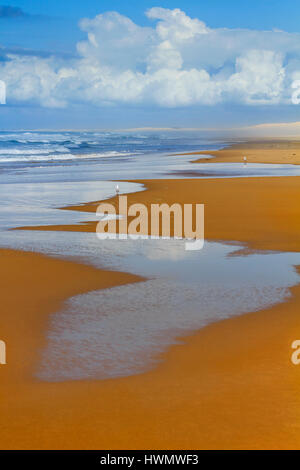 Flat dense wet sand on Stockton beach pressed by surfing waves. Vertical view of long empty coastal line in NSW, - Stock Photo