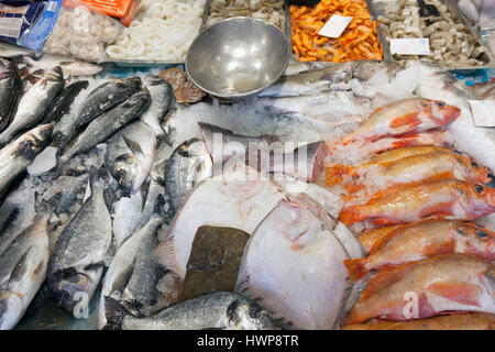 many different kinds of sea fish on display on marketstall in the netherlands - Stock Photo