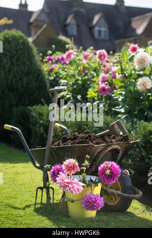Re. Making compost at Wardington Manor near Banbury, Oxfordshire - spreading compost amongst Dahlias - Stock Photo