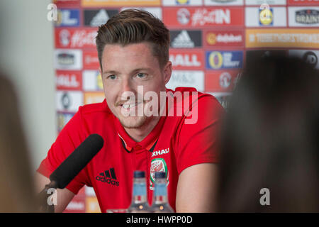 Vale Resort, Vale of Glamorgan, Wales, UK. 22nd Mar, 2017. Wayne Hennessey faces the press during Wales player media - Stock Photo