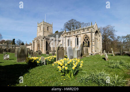 Romaldkirk Church, Teesdale, County Durham UK. Tuesday 4th April 2017. UK Weather. Daffodils flowering in the spring - Stock Photo