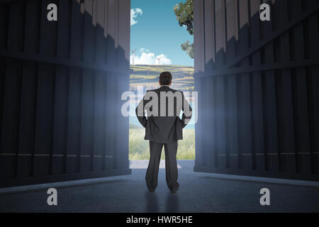 Businessman standing back to the camera with hands on hip  against scenic backdrop 3d - Stock Photo