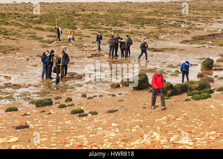 HUNSTANTON, ENGLAND - MARCH 10: Group of school children carrying out geological investigations on Hunstanton beach. - Stock Photo