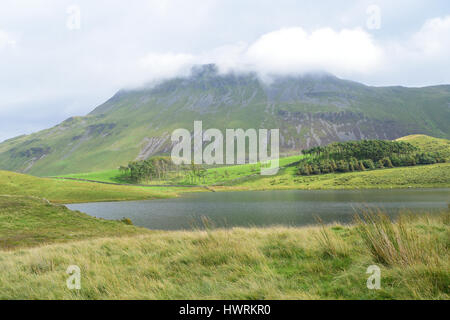 Peaceful scenery near Cregennan Lakes and Cadair Idris - Stock Photo