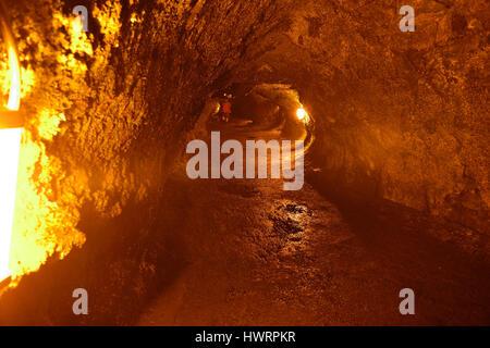 The Thurston Lava Tube in Hawaii Volcano National Park, Big Island - Stock Photo