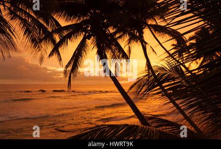 Sunset at the ocean in Sri Lanka, Unawatuna, Galle district - Stock Photo