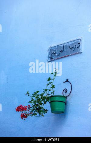 Chefchaouen, Morocco.  Owner's Name and Flower Pot on Wall of a House. - Stock Photo
