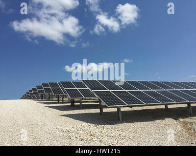 Solar panels on field against blue sky during sunny day - Stock Photo