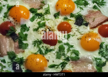 Tasty and nutritious eggs fried in a skillet with bacon, tomatoes, dill and parsley. - Stock Photo