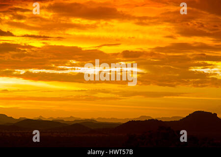 Sunset over Namib desert in Sossusvlei region with dead Camel thorn trees Namibia March - Stock Photo