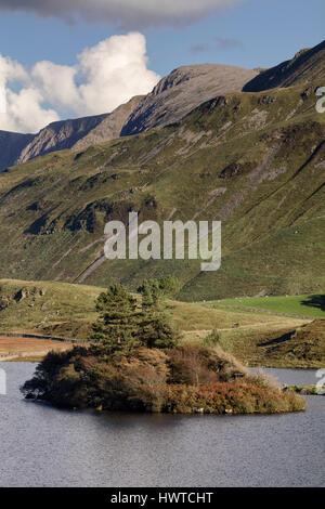 An island in the large lake at Cregennan Lakes at Cadair Idris near Dolgellau in Snowdonia in North Wales - Stock Photo