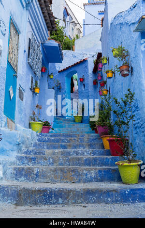 Chefchaouen, Morocco.  Flower Pots Line Steps Leading to a House  in the Medina. - Stock Photo