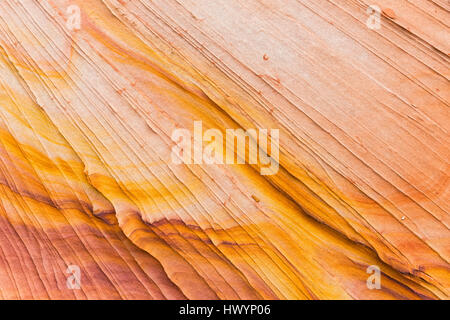 USA, Arizona, Page, Paria Canyon, Vermillion Cliffs Wilderness, Coyote Buttes, structures in sandstone - Stock Photo