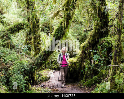 Woman on path in rain forest, trail to viewpoint at Ventisquero Colgante (hanging glacier),  Park Quelat,  near - Stock Photo