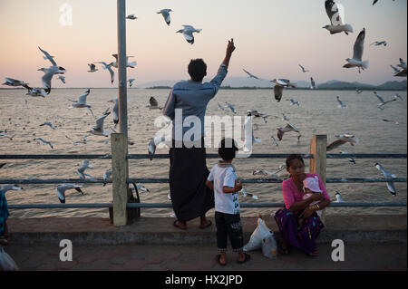 30.01.2017, Mawlamyine, Republic of the Union of Myanmar, Asia - People feed seagulls at the waterfront in Mawlamyine. - Stock Photo