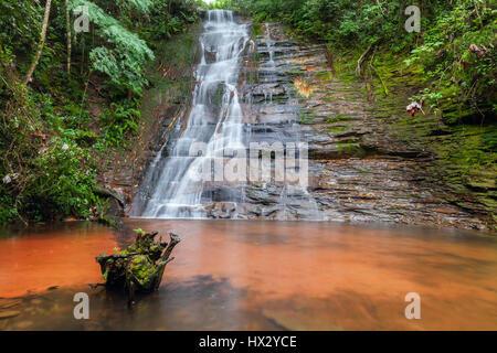 Cascades, beautiful waterfall in a rainforest. Bolivia. Long exposure. Stock photo - Stock Photo