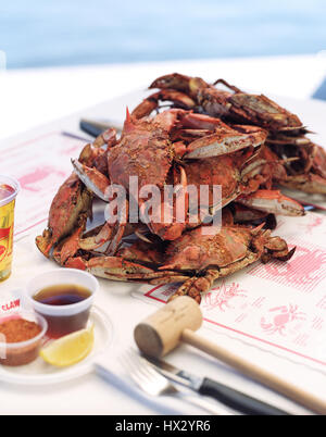Maryland Blue Crabs at the Crab Claw Restaurant at the Inner Harbor of St. Michaels,Maryland, USA, - Stock Photo