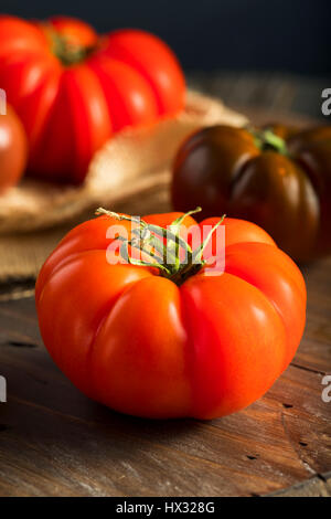 Raw Organic Red and Brown Heirloom Tomatoes Fresh of the Vine - Stock Photo