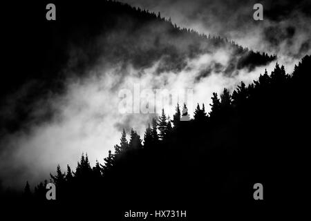 fog in the mountain valley - Stock Photo