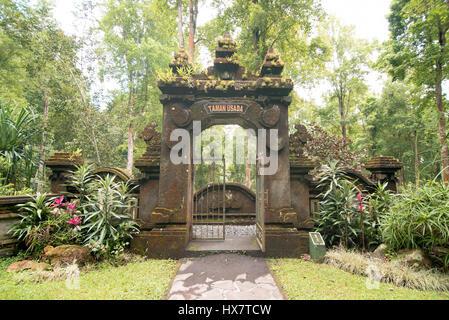 Taman Usada, Kebun Raya Bali in Ubud - Stock Photo