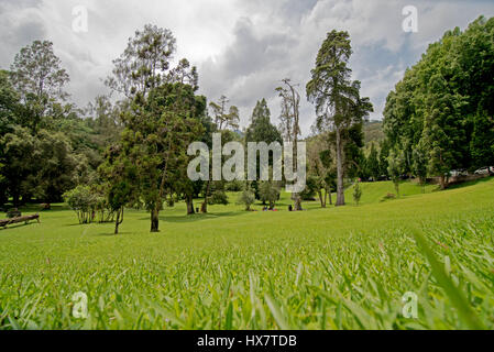 national park, Kebun Raya Bali in Ubud - Stock Photo