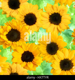 Seamless pattern made up by photos of yellow sunflowers, on a green watercolor texture with hand painted circles - Stock Photo