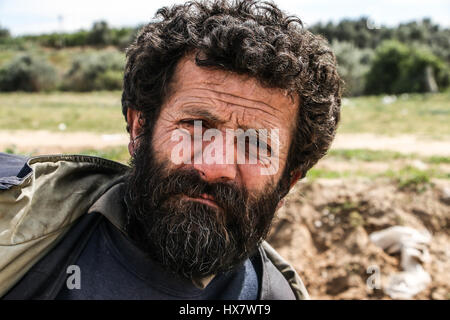 This is a Palestinian man who left school for work, now 45 years old and he have 11 sons . he is a Farmer Strawberry - Stock Photo