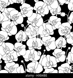 Seamless natural pattern of flowering orchids, painted black outline on a black background. Phalaenopsis. Hand drawn - Stock Photo