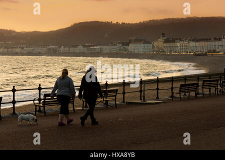 Early morning dog walkers taking in the sunrise along the promenade at the popular coastal town of Llandudno, Wales - Stock Photo