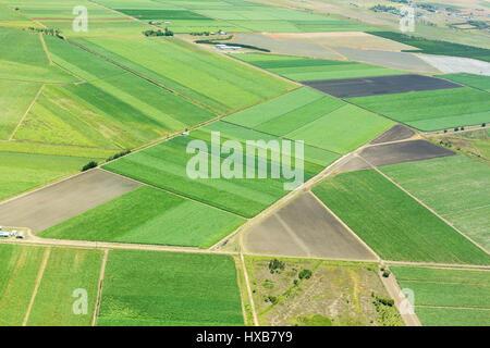 Aerial view of sugar cane farmland near  Bundaberg, Queensland, Australia - Stock Photo
