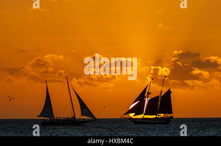 Sunset at sailboat, Key West - Florida - Stock Photo