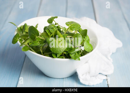 Fresh watercress in a jug with white muslin cloth