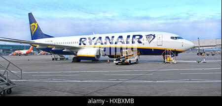 Irish Ryanair Boeing 737-8AS plane on airport tarmac being prepared at Stansted Airport Essex England UK with EasyJet - Stock Photo
