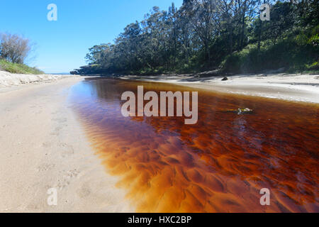 Tannin-stained creek flowing into the sea at Abraham's Bosom Reserve, Currarong, Jervis Bay, Shoalhaven, New South - Stock Photo