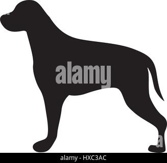 black figure big dog animal - Stock Photo