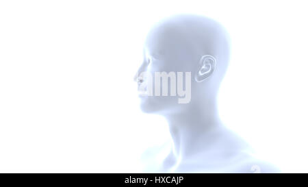 semi-profile of a handsome muscular young smiling Asian man (conceptual 3d illustration on a white background) - Stock Photo