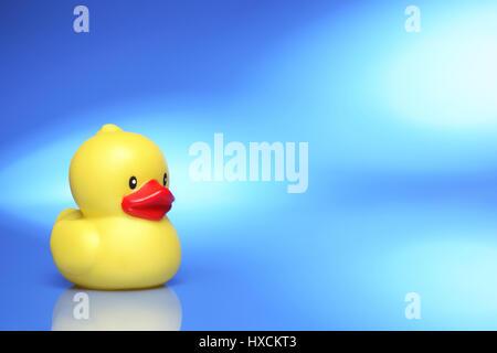 Elastic duck, Gummiente - Stock Photo
