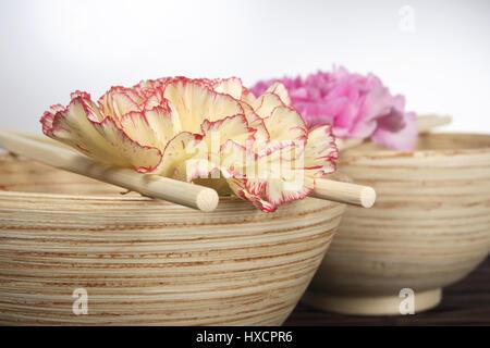 Wooden bowls with rod and carnation blossoms, Holzschalen mit Staebchen und Nelkenblueten - Stock Photo
