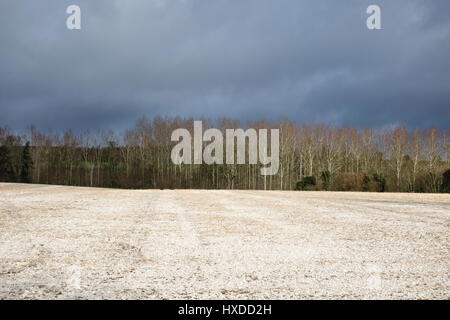 Paper pulp spread on fields as a mulch or soil conditioner, Herefordshire, UK - Stock Photo