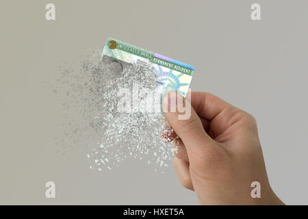 USA green card disintegrates in a man's hand - Stock Photo