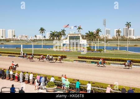 HALLANDALE BEACH, USA - MAR 11, 2017: Horse racing at the Gulfstream Park race track in Hallandale Beach, Florida, - Stock Photo