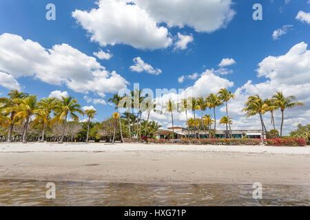 Matheson Hammock Park beach in Miami, Florida, United States - Stock Photo